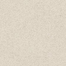 Shaw Floors Value Collections Suave Net Blondie 00191_5E388