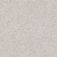 Shaw Floors Value Collections Suave Net Concrete 00590_5E388