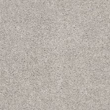 Shaw Floors Value Collections Suave Net Birch 00591_5E388