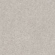 Shaw Floors Value Collections Suave Net Koala 00592_5E388