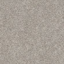 Shaw Floors Value Collections Suave Net Mushroom 00594_5E388