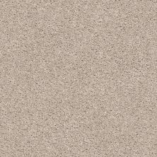 Shaw Floors Value Collections Suave Net Twine 00790_5E388