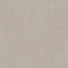 Shaw Floors Foundations Harmonious II Split Sediment 00104_5E437