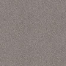 Shaw Floors Foundations Harmonious II Grey Fox 00504_5E437