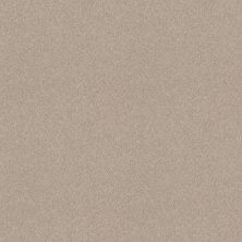 Shaw Floors Foundations Harmonious II Sandstone 00743_5E437