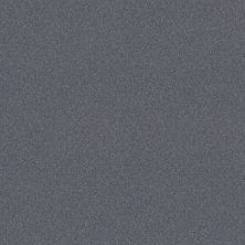 Shaw Floors Foundations Harmonious I Indigo Ink 00437_5E438