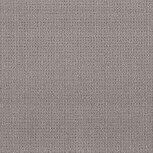 Shaw Floors Foundations Faint Intent Grey Fox 00504_5E441