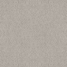 Shaw Floors Foundations Alluring Canvas Split Sediment 00104_5E445