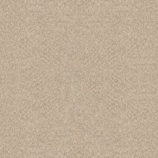 Shaw Floors Foundations Alluring Canvas Sun Kissed 00110_5E445