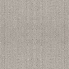 Shaw Floors Foundations Fine Tapestry Split Sediment 00104_5E446