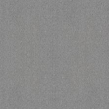Shaw Floors Foundations Fine Tapestry Sentimental 00538_5E446