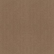 Shaw Floors Foundations Fine Tapestry Raw Wood 00720_5E446