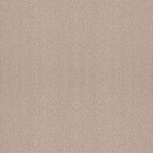 Shaw Floors Foundations Fine Tapestry Heirloom 00803_5E446