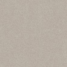 Shaw Floors Foundations Harmonious III Split Sediment 00104_5E451