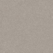 Shaw Floors Foundations Harmonious III Baltic Stone 00128_5E451