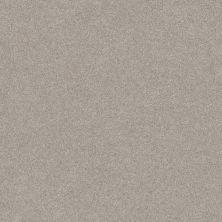 Shaw Floors Foundations Harmonious III Baltic Stone 00128_5E451