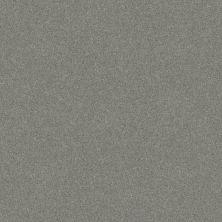Shaw Floors Foundations Harmonious III Water's Edge 00307_5E451