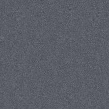Shaw Floors Foundations Harmonious III Indigo Ink 00437_5E451
