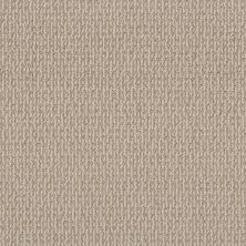 Shaw Floors Bellera Crafted Embrace Sun Kissed 00107_5E455
