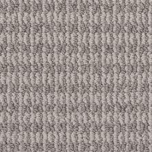 Shaw Floors Bellera Chic Elevation Split Sediment 00104_5E456