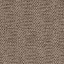 Shaw Floors Simply The Best Channeling Worn Leather 00702_5E457
