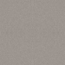 Shaw Floors Simply The Best Embellished Ashen 00114_5E458