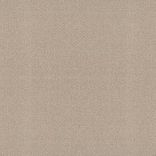 Shaw Floors Simply The Best Embellished Malibu Dune 00117_5E458
