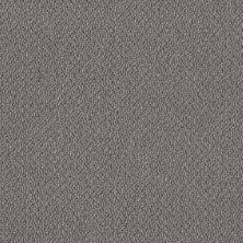 Shaw Floors Simply The Best Embellished Dolphin 00516_5E458