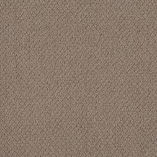Shaw Floors Simply The Best Embellished Raw Wood 00710_5E458