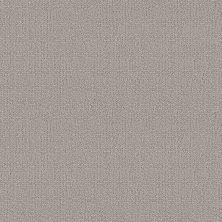 Shaw Floors Value Collections Loop De Loop Net Warm Greige 00104_5E468