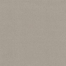Shaw Floors Value Collections Loop De Loop Net Sandstone 00108_5E468