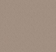 Shaw Floors Value Collections Loop De Loop Net Pebble Path 00109_5E468