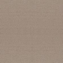 Shaw Floors Simply The Best Iconic Way Net Perfect Taupe 00119_5E470