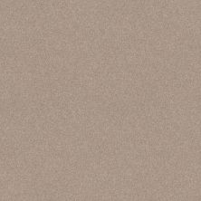 Shaw Floors Foundations Harmonious II Net Heirloom 00803_5E472