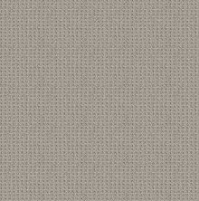 Shaw Floors Foundations Faint Intent Net Silver Lining 00500_5E474