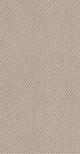 Shaw Floors Foundations Naturalistic Net Sun Kissed 00110_5E475