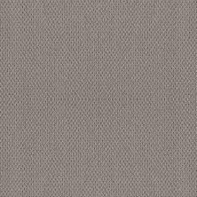 Shaw Floors Foundations Naturalistic Net Grey Fox 00504_5E475