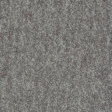 Shaw Floors Value Collections Take Away (s) Net Shadow 00502_5E479