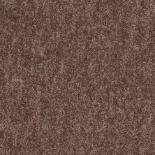 Shaw Floors Value Collections Take Away (s) Net Canoe 00703_5E479