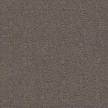 Shaw Floors Simply The Best Boundless II Slate Stone 00105_5E486