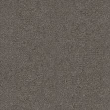 Shaw Floors Simply The Best Boundless II Magnetic 00502_5E486