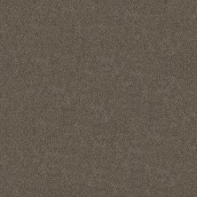 Shaw Floors Simply The Best Boundless II Woodcraft 00701_5E486