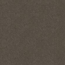 Shaw Floors Simply The Best Boundless II Gateway 00702_5E486