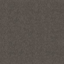 Shaw Floors Simply The Best Boundless III Shadow 00703_5E487
