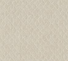Shaw Floors Value Collections Versatile Net Pearl 00103_5E493
