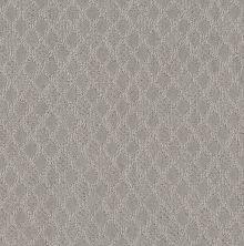 Shaw Floors Value Collections Versatile Net Stone 00104_5E493