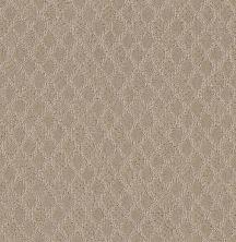Shaw Floors Value Collections Versatile Net Nature Walk 00107_5E493