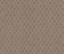 Shaw Floors Value Collections Versatile Net Shadow 00109_5E493