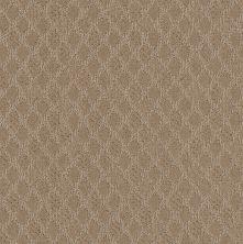 Shaw Floors Value Collections Versatile Net Toast 00110_5E493