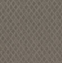 Shaw Floors Value Collections Versatile Net Iced Mocha 00505_5E493